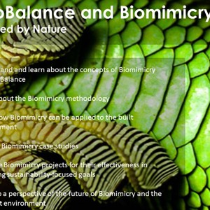 Ecobalance-Biomimicry-product-icon